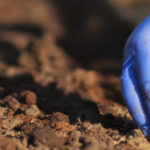 Mestrado CERS realiza Workshop Agroecologia, Direito e Mercado