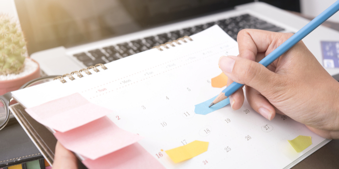 cronograma de estudos para concursos