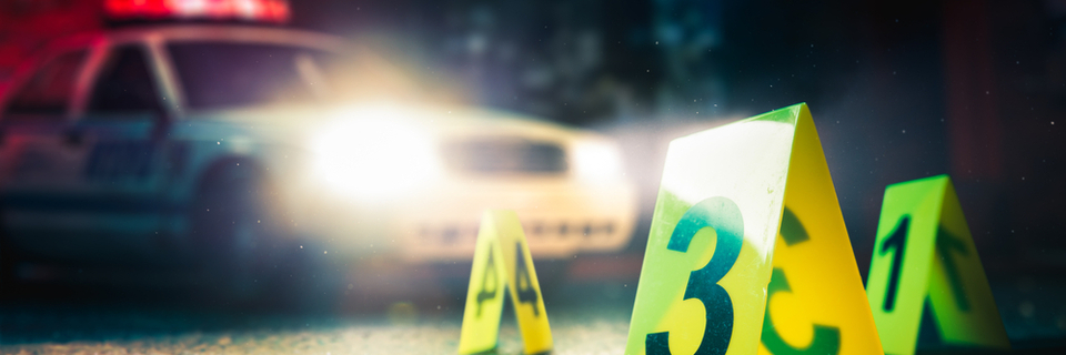 Man hands himself into police after five murdered in Alpine resort
